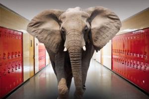 elephant classroom